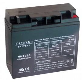 TASHIMA Batterie 12V – 20Ah - NH1220 - Spécial Moto BMW / Tondeuse HONDA